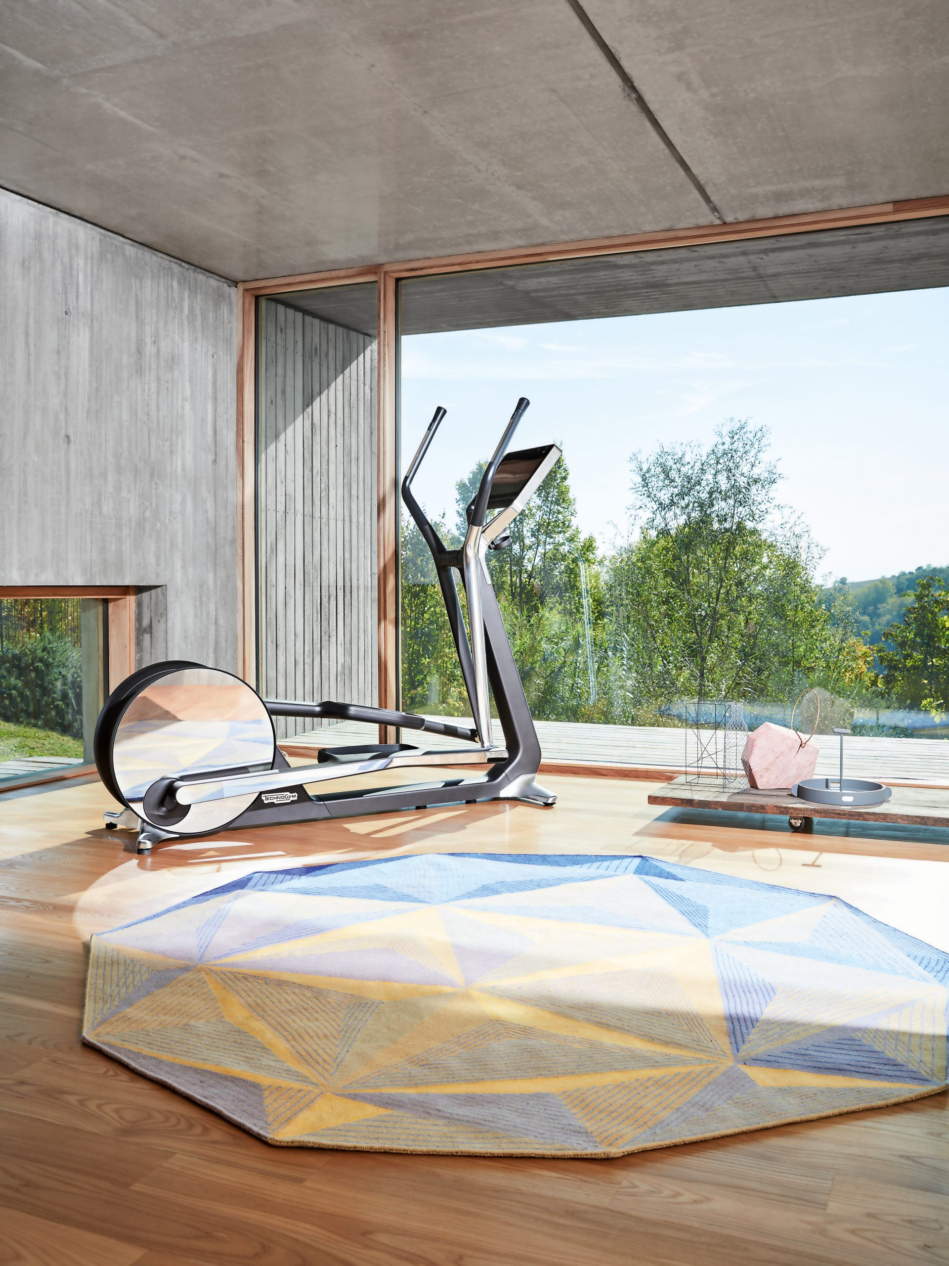 Technogym Bike Personal nature room